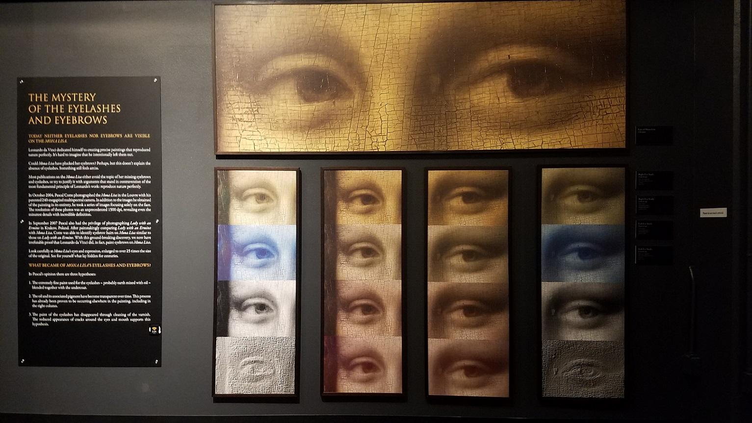 2018-DaVinci exhibit (11)