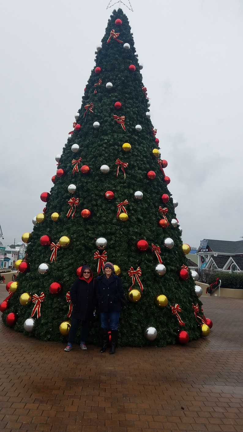 Dena and me by 40 foot tree